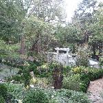 Abbington Valerie's English Garden