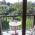 Balcony view of garden