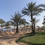 HOTEL'S BEACH