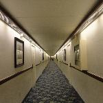 The hallway with the drop down ceiling