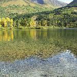 fall shot of lake