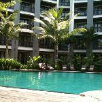 piscine du jardin