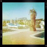 Pool overlooking the coast