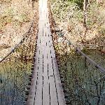 Pedestrian bridge on Park Trail