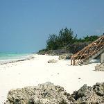 Am Strand vor The Zanzibari