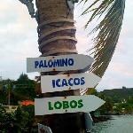 near by islands