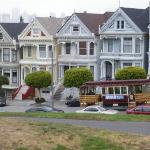 The infamous Painted Ladies