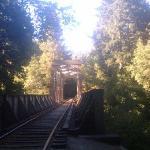 Railroad bridge on the Eagle Creek Trail