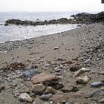 The rocky beach...wasn't so rocky.