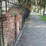 Walking on Abercorn Street