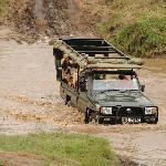 Serian - on safari