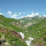 Southern Alps- Verdant View