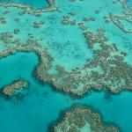 GREAT BARRIER REEF FROM THE AIR