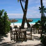 beach dining and relax