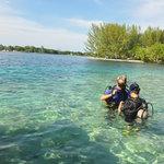 Photo de Captain Morgan's Dive Centre