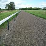 Trail passes thru a horserace training area