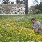 Maviay Hotel  garden in spring time