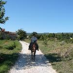 I really did arrive on a horse