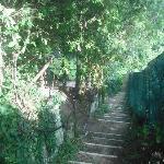 Campsite steps