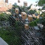 High Line Bird Feeder