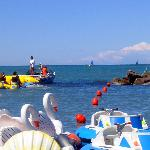 Water Sport e paperelle galleggianti