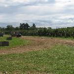 Tougas Farm