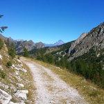 Un sentiero delle varie passeggiate che consente il territorio