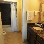 Dressing area & bathroom