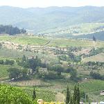 Beautiful Tuscany View