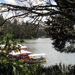 The nearby Ooty Lake