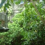 Las Clementinas Garden