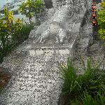Cementerio de Colón_La tumba del perro