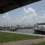 Puerto Chico Marina
