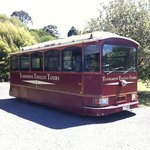Tamborine Mountain Tours
