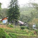 scenic resort