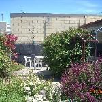 courtyard garden with o/door setting