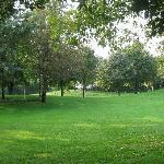 Il giardino/parco di Villa boschetti e' stupendo