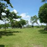 芝生の海浜公園