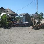 Beach fish bar