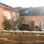 Photo of Tilleul Plaza Residence