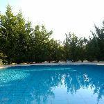 Gorgeous little pool