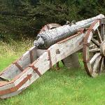 Cannon in the grounds