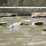 Die Asche und alle Opfergaben werden dem heiligen Fluss übergeben