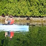 kayaking to bear