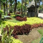 El enorme y colorido jardín....hermoso