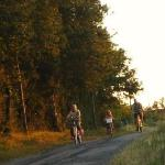 Quiet lanes, perfect for borrowing a bike and exploring