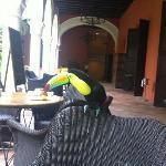 desayunando con Clarita