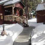 Cabin #12 - Mar 2011