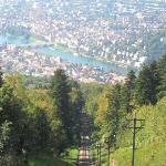 steep hillside view on funicular railway  up to Konigstuhl