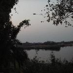 view of zambezi river from our room